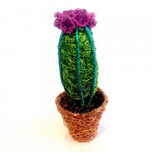 Miniature cactus with flower in pot